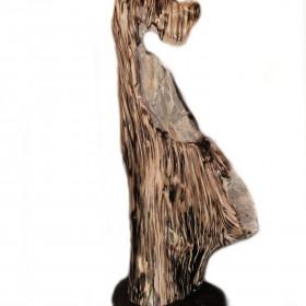 Rzeźby Skamieniałe Drewno