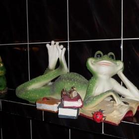 Moje żabki:)