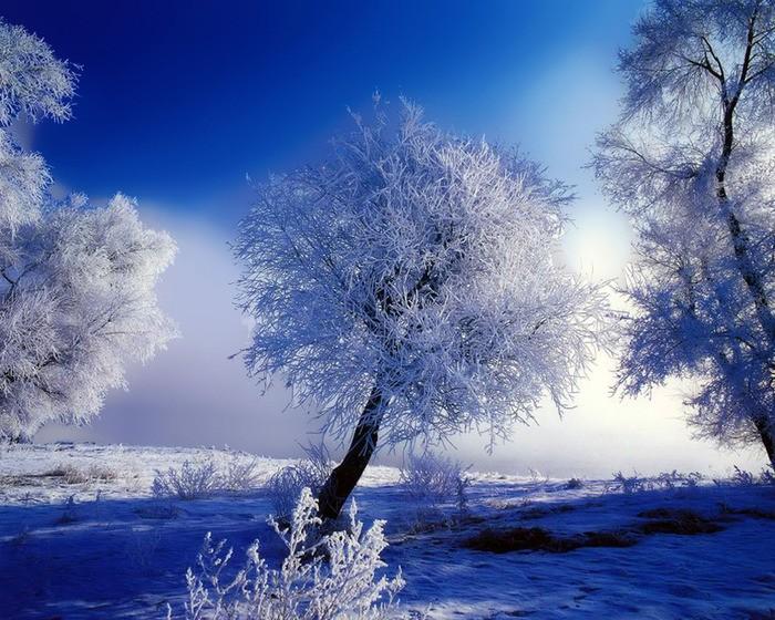 Bajkowa zima by angusek