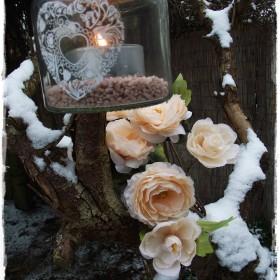 Zimowe relacje z ogrodu&#x3B;