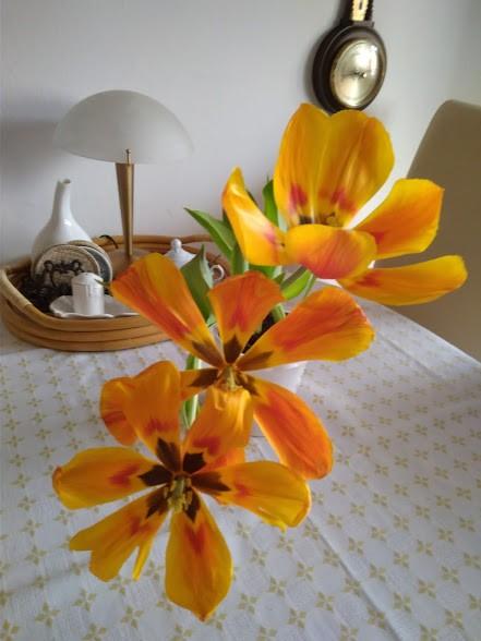 Gabinet, Książkowa galeria :) - Tulipany przekwitły ale w tym stanie też mi się podobają :)