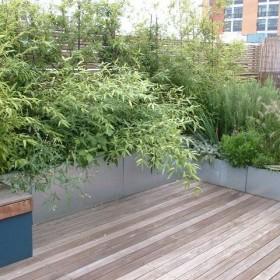 ogród na szaro