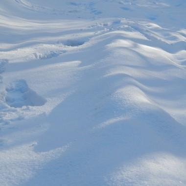 w krajobrazy  zimy wpiszę - biały