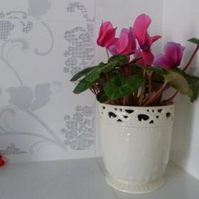 Moje kwiatki :))