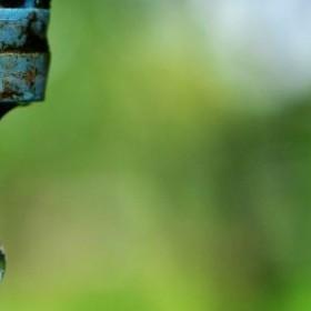 Obniż rachunki! 13 łatwych sposobów na oszczędzanie wody