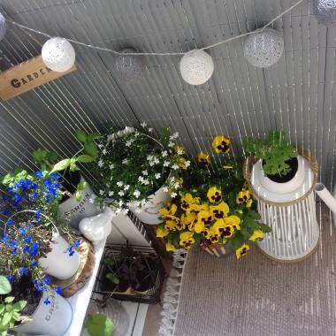 Balkon pełen witamin i minerałów :)