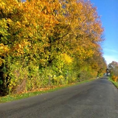 Tak niedawno była jesień..