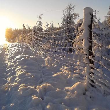 zima 2014 (26.12.2014)