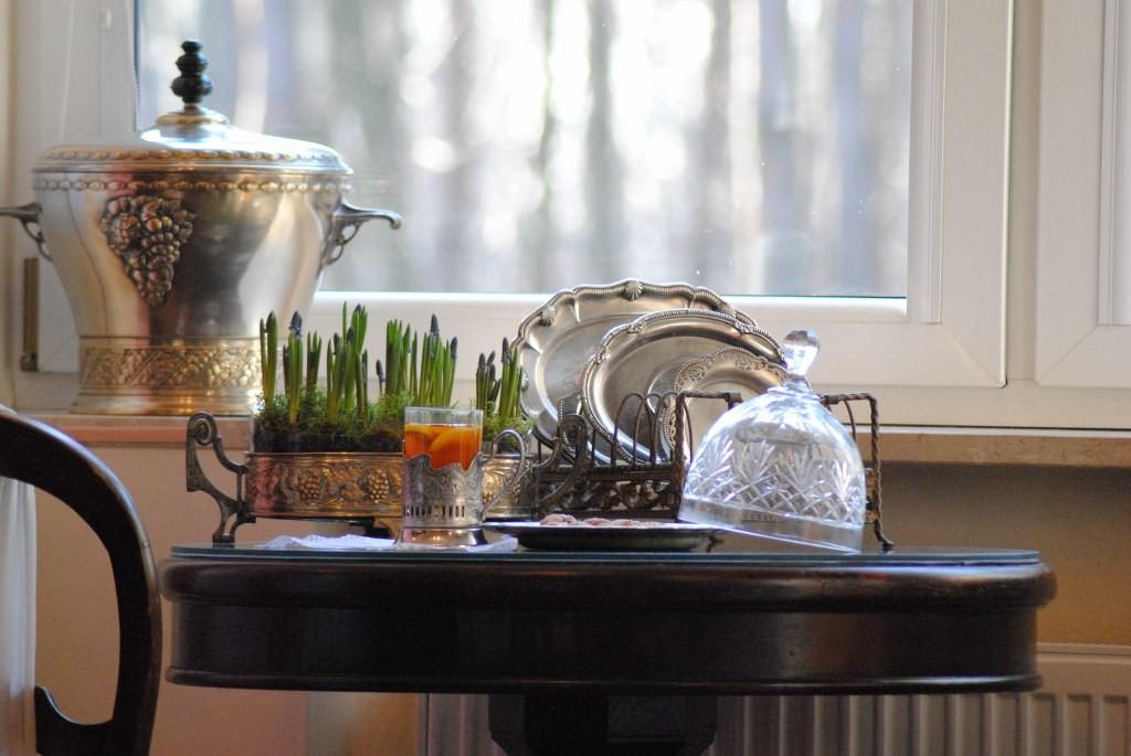 Rośliny, Styczeń .... - A w domu wiosna :)