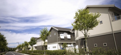 Miliony domów czeka na nowych właścicieli. Rozdają je za darmo