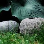 Akcesoria z kamienia naturalnego