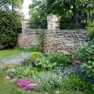 U mnie ogród to głównie trawa i iglaki. Tylko ten zakątek jest małym wyjątkiem. Co roku cieszy oko