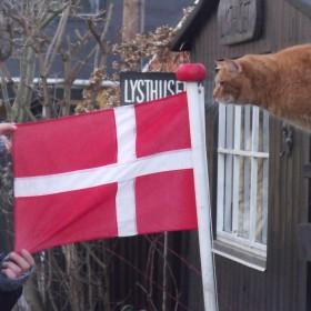 ...kopenchga ,okolice...i troche szwecji