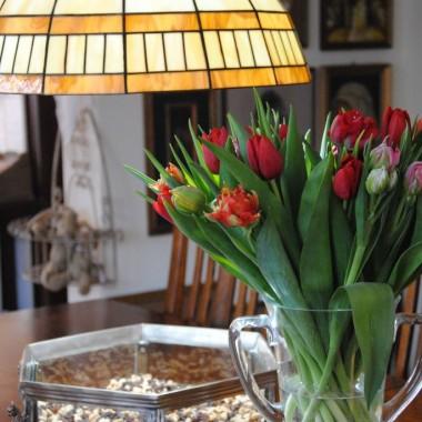 ...i marcowe tulipany :) tym razem różne gatunki i rózne kolory ,tak na przekór temu co za oknem