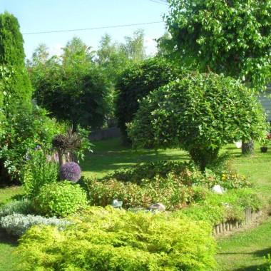 Lipcowy ogród w lipcowym słońcu :)
