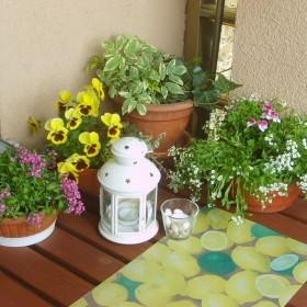 Balkonik - na wiosnę