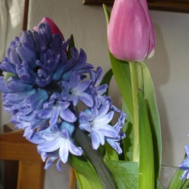 Niebieska....... prawie wiosenna galeria znad morza ..........