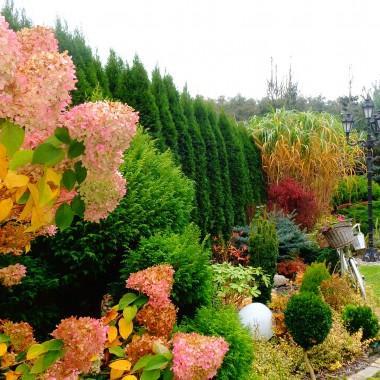 Barwy jesieni :)