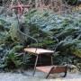 Rośliny, Styczeń .... - Saneczki czekają na śnieg ...może w lutym ???