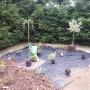 Ogród, Ogród wiosną... - Jest co robic, rośliny z tarasu wysadzamy na rabaty, nowe powędrują na taras