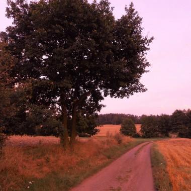 W tonacji wrzosów i jesiennych zachodów słońca.