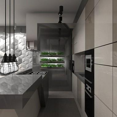 nowoczesna kuchnia w apartamencie