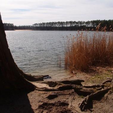 """pod Opolem  jezioro """"Osowiec,"""" bardzo czyste jeziorko, oblegane latem oraz zimą przez morsy"""