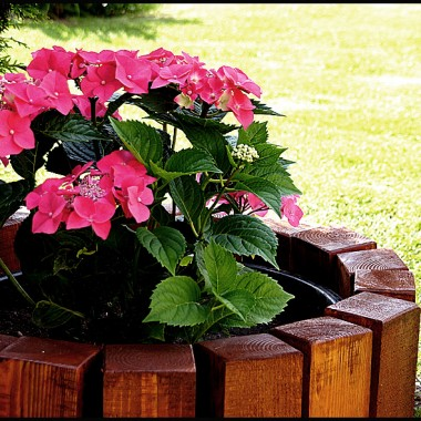 Ogród, balkon, taras ... oj lubimy :)