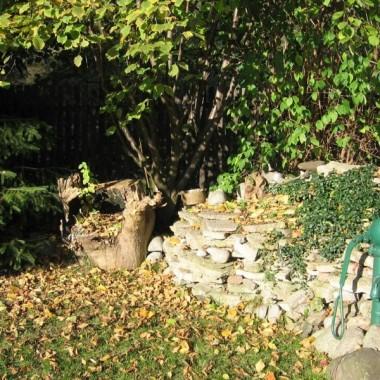 Zapraszam ponownie do mojego ogrodu, w którym jesień wykorzystała pełną paletę barw. Zdjęcia robiłam w pażdzierniku, kiedy ogród był jeszcze obdarzony przez naturę wszystkimi jesiennymi kolorami, bo teraz jest o wiele bardziej ponury i smutny...Są w nim krzewy, kwiaty, jesienne liście i moje ukochane róże.....Może spacer po jeszcze ciepłym, słonecznym ogrodzie uprzyjemni komuś szary i chłodny dzisiejszy dzień.