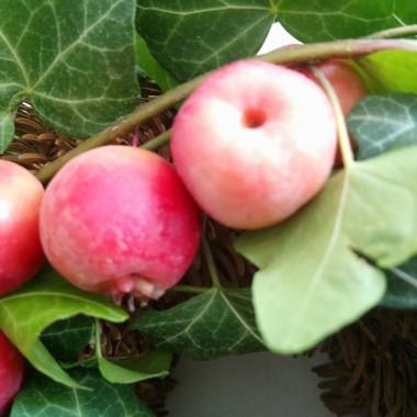 ..............i jabłuszka.................