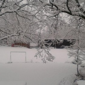 Gdzie ta wiosna????????