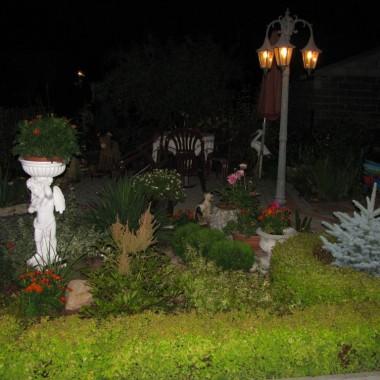 nocna sesja w ogrodzie