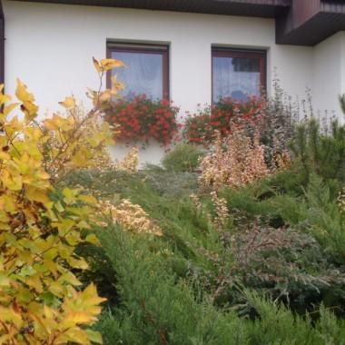 Jesien w ogrodzie nowe szaty w oknie