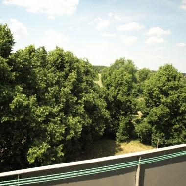 na przekór zbliżającej sie zimie, widok z balkonu