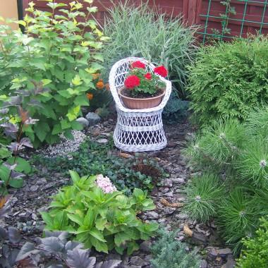 Mój Mały ogródeczek