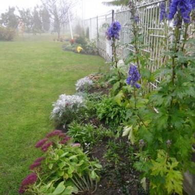 Ogród w porannej jesiennej mgle...