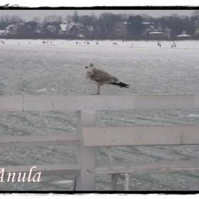 ....a  tak  było  ...Sopot 2010