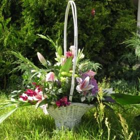 kwiaty moje hobby