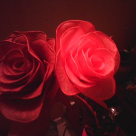 Róża.....