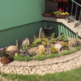 mój ogródek - maj 2012