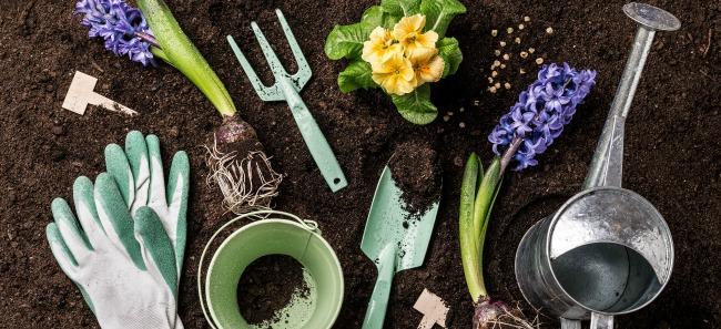 Poradnik ogrodnika: Czas na porządki po zimie i przygotowanie do nowego sezonu