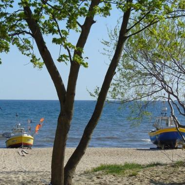 ..................i kutry na plaży..................