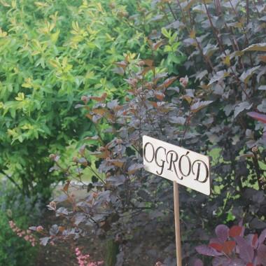 Czerwcowy ogród:)