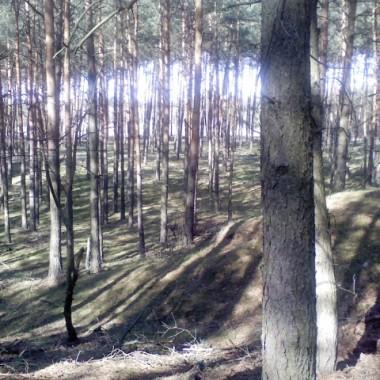 Wiosenny spacer