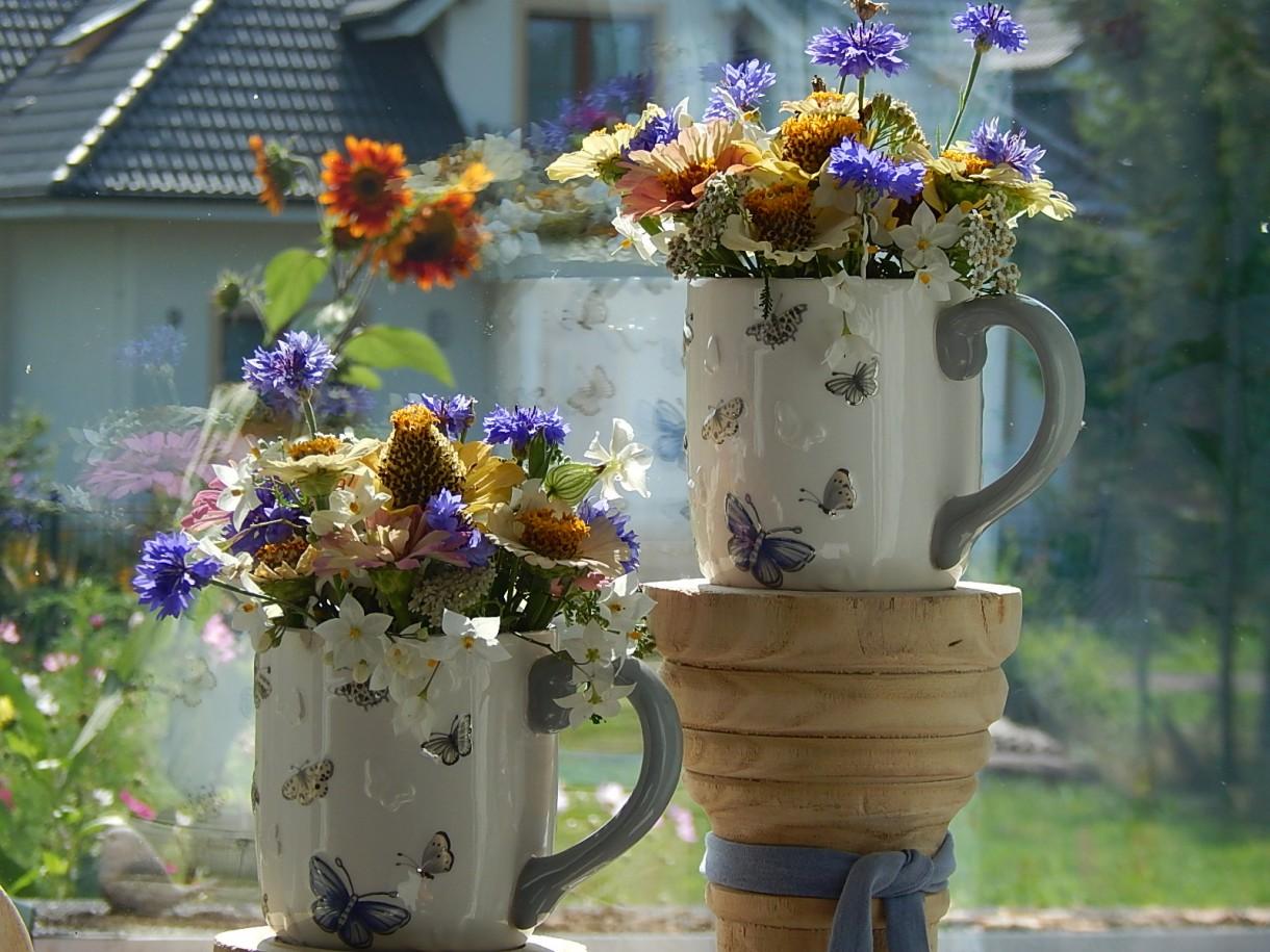 Rośliny, SOBOTA :)