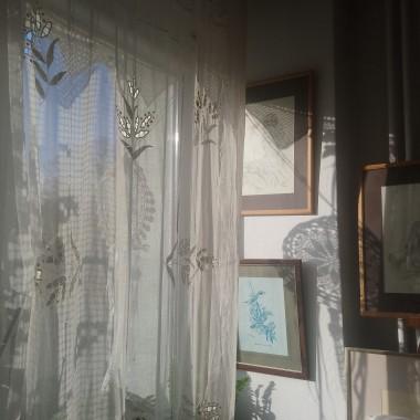 ...............i słonko za oknem..............
