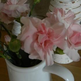 Różowy salon i wiosenne pstryki