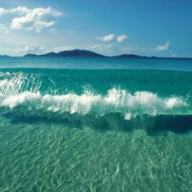 Palmy,słońce i woda..