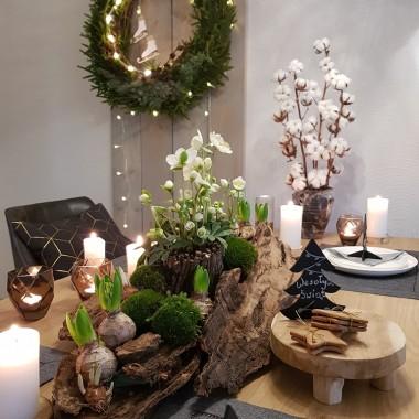 W tym roku w dekoracjach swiatecznych zamarzyly mi sie kwiaty ciemiernika, sa delikatne i piekne .Doniczki z kwiatami ukrylam w konstrukcji z kory ,dodalam cebulki hiacyntow, krokusow, oczyszscilam z ziemi i delikanie skrocilam im korzenie, cebulki wystarczy pozniej spriskiwac woda :)  dodalam rowniez zielony swiezy mech.  Ciemierniki po swietach mozna wystawic w doniczkach do ogrodka :)