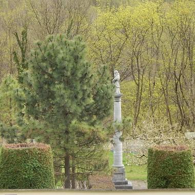 """Spacer po leśnych wzgórzach i ogrodzie Eliasza w Czernej to niewątpliwie relaks dla ciała i pokarm dla ducha...Jakby przeniesienie w inny wymiar rzeczywistości.Inny świat oderwany od codzienności...Wędrówka ścieżkami rezerwatu Doliny Eliaszówki ....to niesamowite przeżycie:)Jeszcze tu powrócimy....jesienią :)Zapraszam również do galerii w kategorii """"Podróże"""" na fotorelację """"CZERNEŃSKIE WZGÓRZE'"""""""